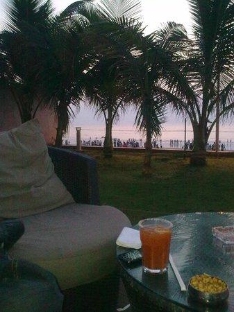 Gadda Da Vida : Beachview from Gadda