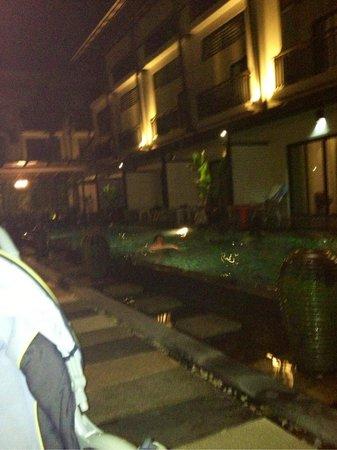 Phu-ke-ta Hotel:                   Бассейн ночью