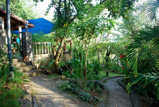 San Simian Eco Lodge :                   View from the entrance