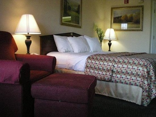 Baymont Inn and Suites Jacksonville/at Butler Blvd.: Guest Room