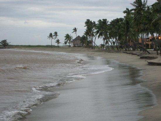 Wyndham Resort Denarau Island:                   Stretch of beach by nearby hotels                 