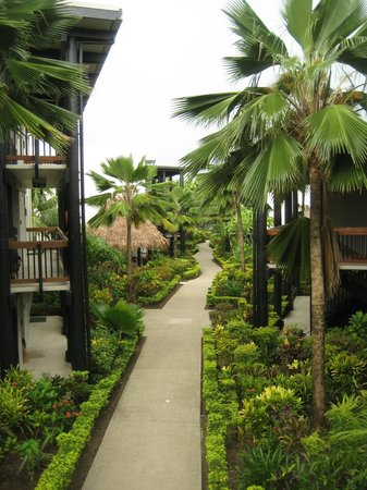 Wyndham Resort Denarau Island:                   Path from lobby to the room.