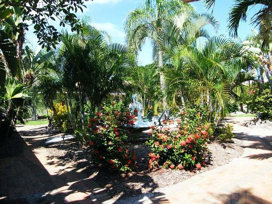 Tropical Breeze Resort: Tropical Courtyard