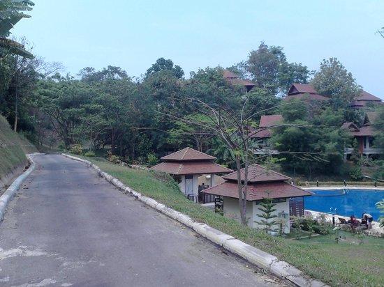 Wanasom Wellness & Aesthetic Resort:                   Surrounding