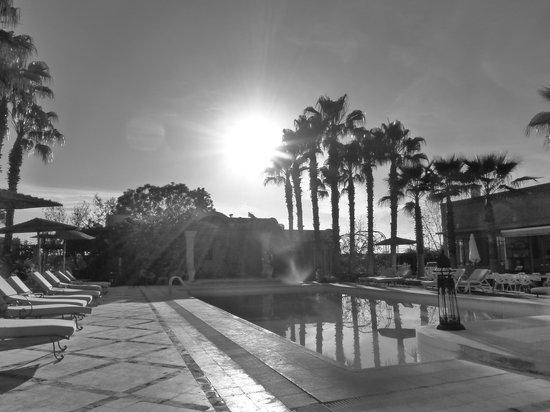 Casa Taos: Poolside