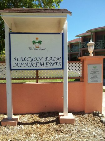 Halcyon Palm :                                     name of hotel