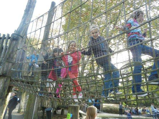 Ouwehands Dierenpark Rhenen:                   Ook buiten speelmogelijkheden