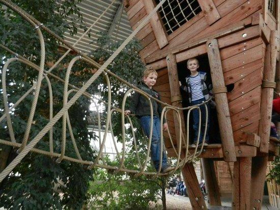 Ouwehands Dierenpark Rhenen:                   Onze jongste zoon met een vriendje in de overdekte speeltuin