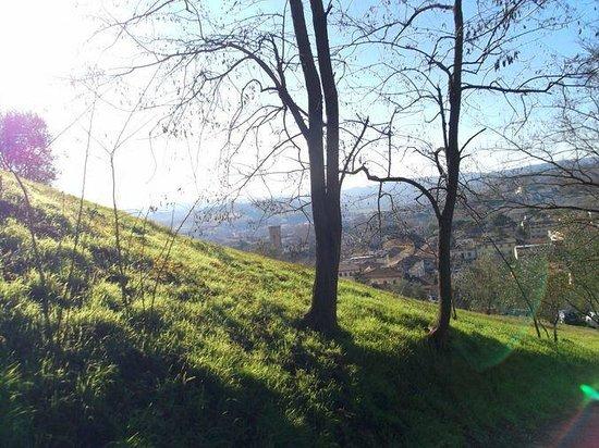 Pendenza in crescendo della strada percorribile a piedi verso Certaldo Alta