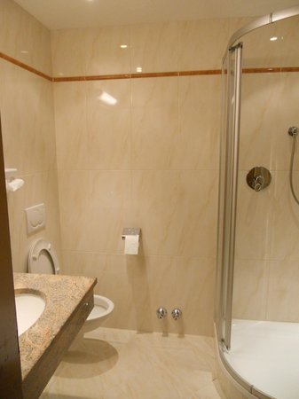 Hotel Alphof: WHIZZY BATHROOM