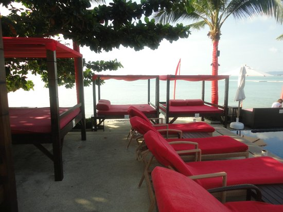 Beach Republic The Residences: Day loungers