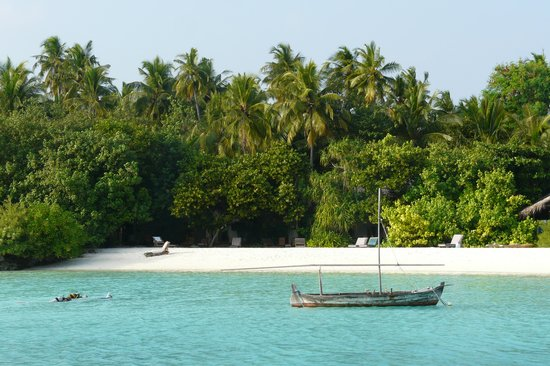 Makunudu Island: the beach in front
