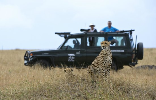 Entim Camp: Entim Game Drive