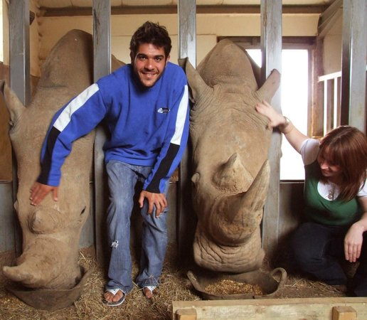 Wraxall, UK: Big Zoo Animals Keeper Experience at Noah's Ark