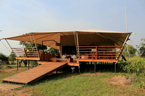 Serengeti Bushtops Camp :                   Reception