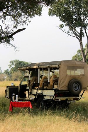 Serengeti Bushtops Camp:                   Jeep and lunch