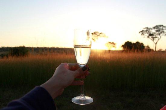 Serengeti Bushtops Camp:                   Shampange breakfast