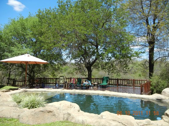 Indlovu River Lodge: another pool deck chot