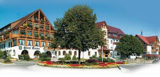 Ringhotel Krone Schnetzenhausen: Aussenansicht