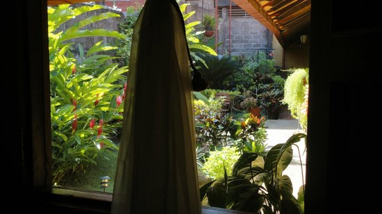 Casona Colonial Guesthouse :                   view from the room