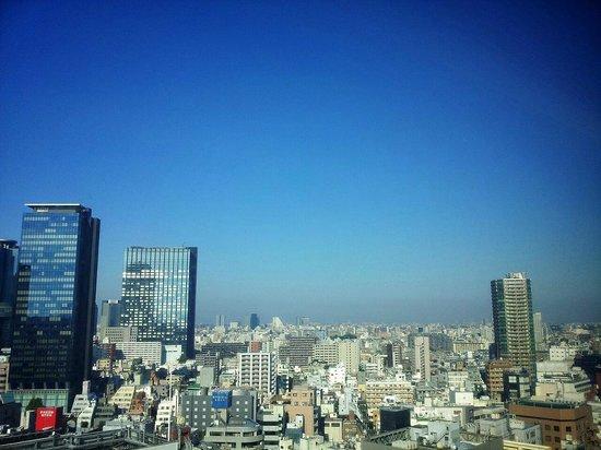 Shinjuku Prince Hotel:                   Nice view