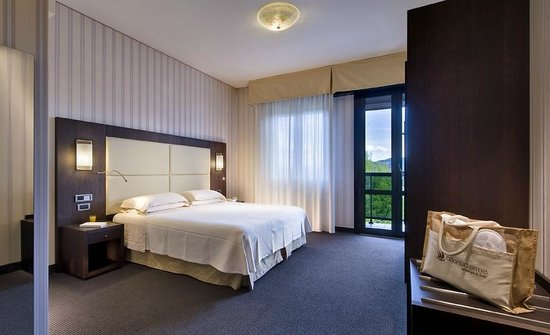 Atlantic Terme Natural Spa & Hotel: Double Room Superior