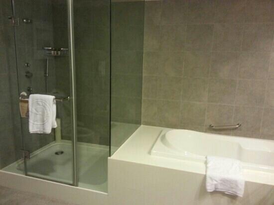 Caesar Park Taipei:                   newly renovated bathroom