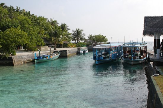 Ellaidhoo Maldives by Cinnamon:                   The harbour where everything arrives