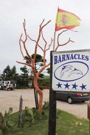 Barnacles Tea Garden