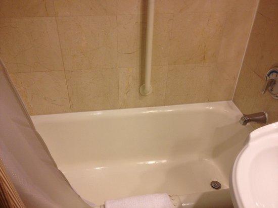 InterContinental New York Barclay:                   The bath