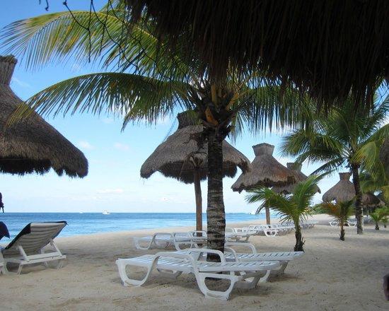 Nachi Cocom Beach Club & Water Sport Center:                   Nachi Cocom, 1/15/13