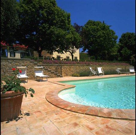 Villa di Piazzano: Pool view