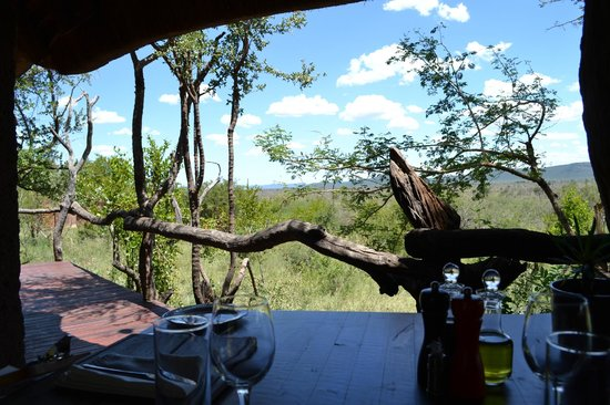 Madikwe Safari Lodge: Lunch view