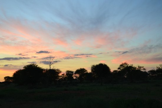 Madikwe Safari Lodge: Sundowner time