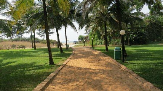 Dona Sylvia Beach Resort Goa Reviews