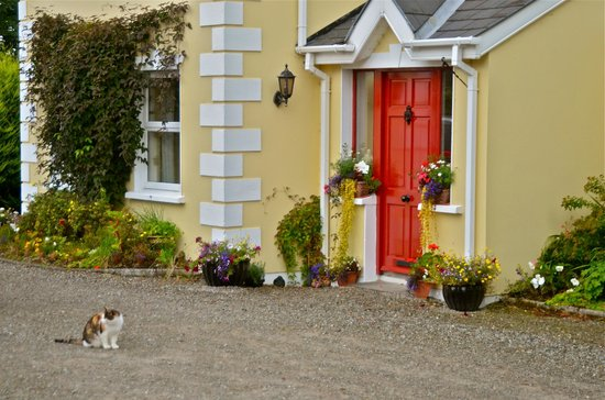 Oldchurch House B&B: Look for the red door
