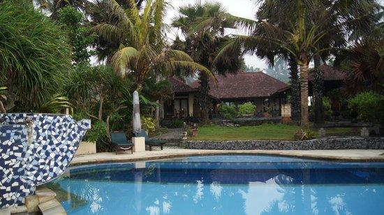 Kebun Impian: Vue de notre chambre a partir de la piscine
