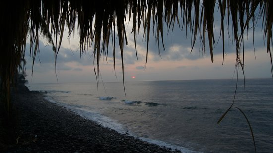 Kebun Impian: Soleil levant