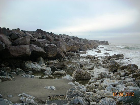 Ocean Shores, WA:                   Exploring the north side and watching the seals