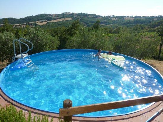 Agriturismo la Venarella: piscine