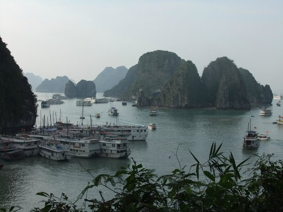 Asia Tour Advisor - Day Tours : one of the scenery during the cruise