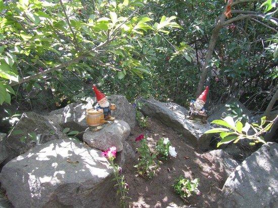 Parque Ecoturistico Cerro Viejo: Gnomos