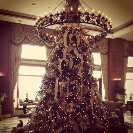 The Inn on Biltmore Estate:                   Lobby Tree