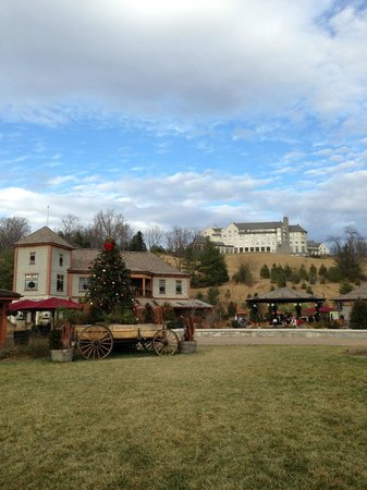 The Inn on Biltmore Estate:                   View from below the hotel Antler Hill Village