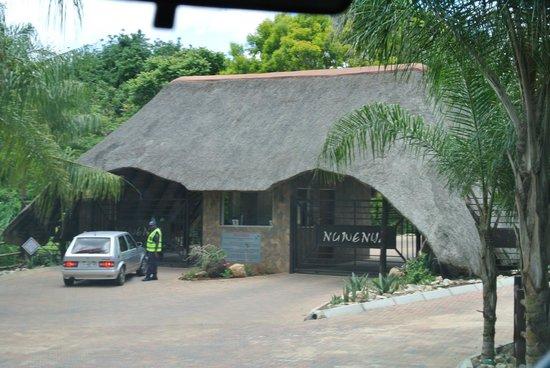 Ngwenya Lodge:                   Einfahrt