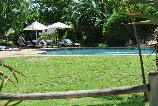 Ngwenya Lodge:                   einer von 5 Pools