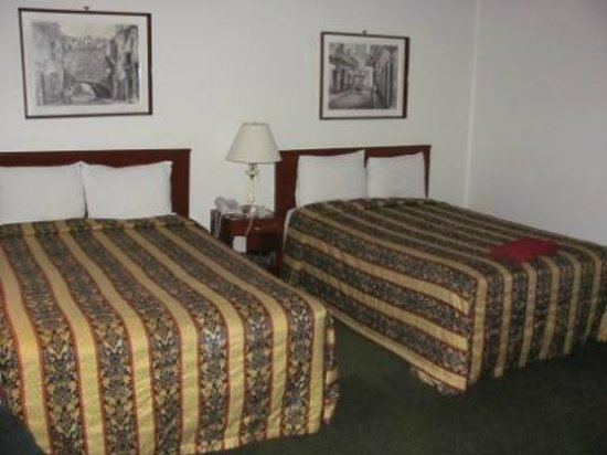 Hotel Ritz Mexico: Las dos camas matrimoniales, un poco duras pero nos sabian a nubes de algodon de lo cansados.