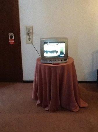 Gran Hotel Dora: Habría que modernizar las teles por unas LED o LCD.