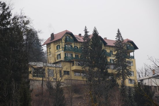 Hotel Triglav Bled:                   View of Hotel Triglav from the lake