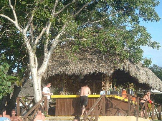 Casa Marina Beach & Reef:                   en av barerna